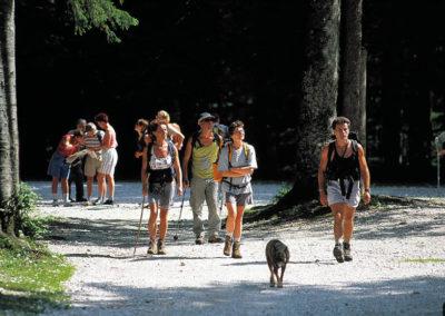 Kranjska Gora - Sprehodi